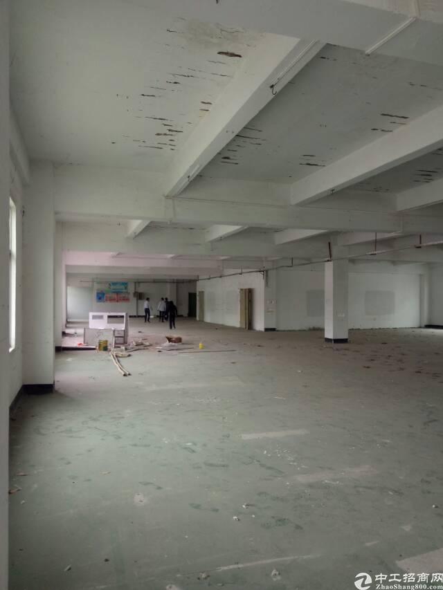 红本独院,坪山区坑梓独院厂房4500平方出租