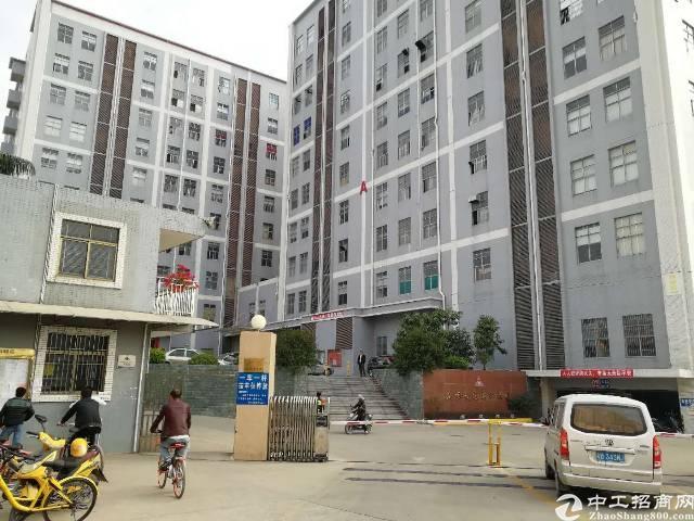 沙井高速出入口附近新出楼上精装修厂房1300平