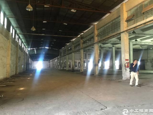 龙华新区新出标准厂房一楼5000平方层高6米