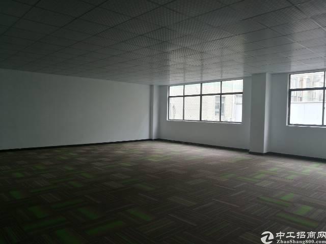 龙华大浪华荣路边上工改写字楼出租100-1000平大小分租