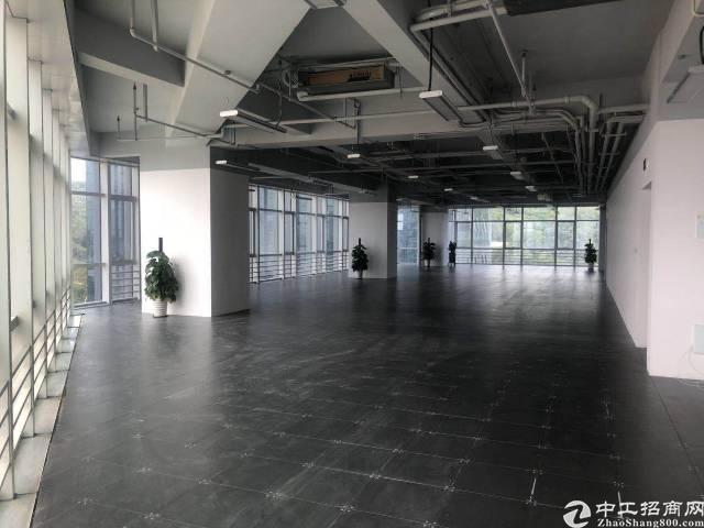 龙岗新出红本高端商务中心火爆招租