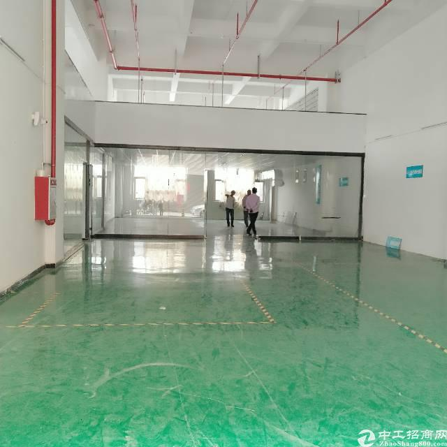 常平镇新出500平方一楼带地面漆.
