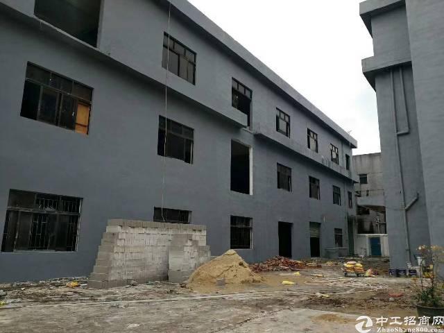 大朗镇独院标准厂房3200平方带写字楼招租