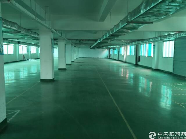 宝安独门独院厂房出租13100平方。-图7