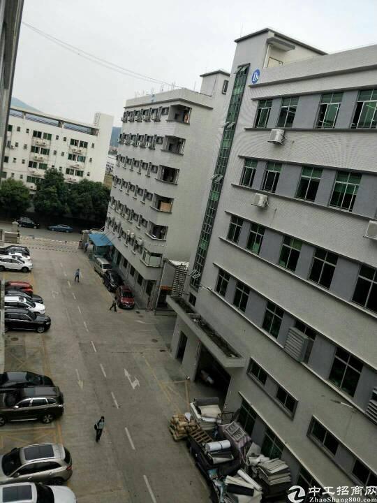 清溪靠近凤岗新出带装修标准厂房2楼730㎡出租
