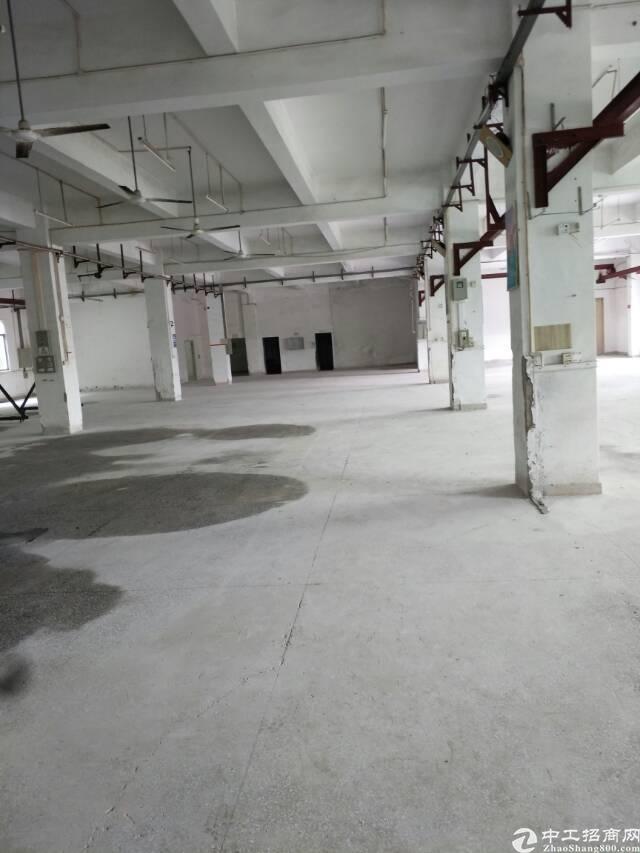 横岗沙荷路边一楼1800平方出租