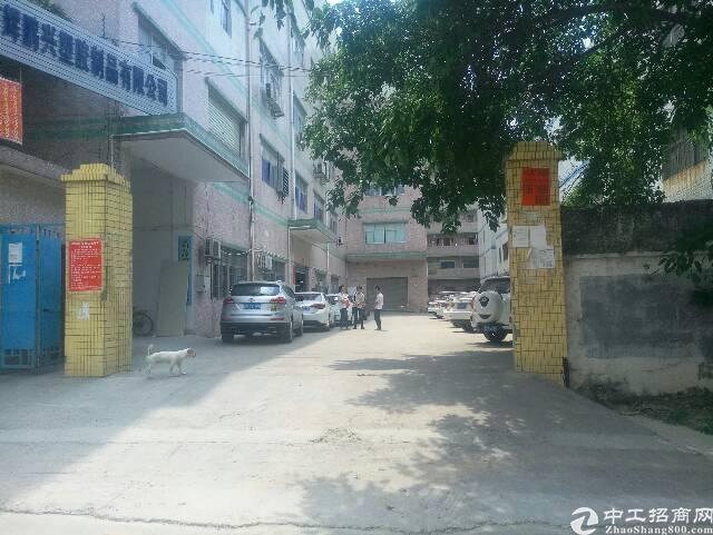 横岗安良一楼5.5米600平方带装修厂房出租可分租