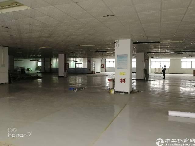 福永凤凰岭下北路原房东厂房