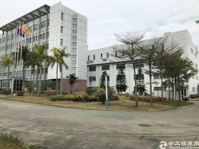 陈江镇仲恺六路边标准厂房60000平方可分租