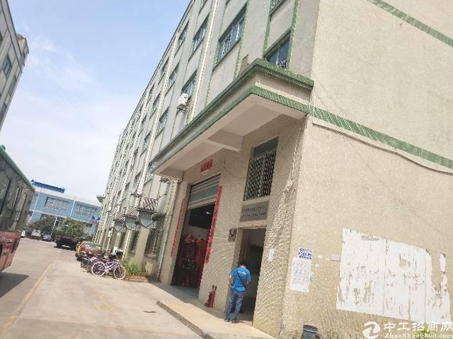 坑梓工业区内新出三楼2200平方便宜租,红本