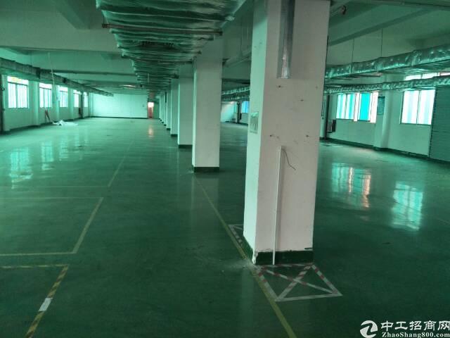 宝安独门独院厂房出租13100平方。-图2