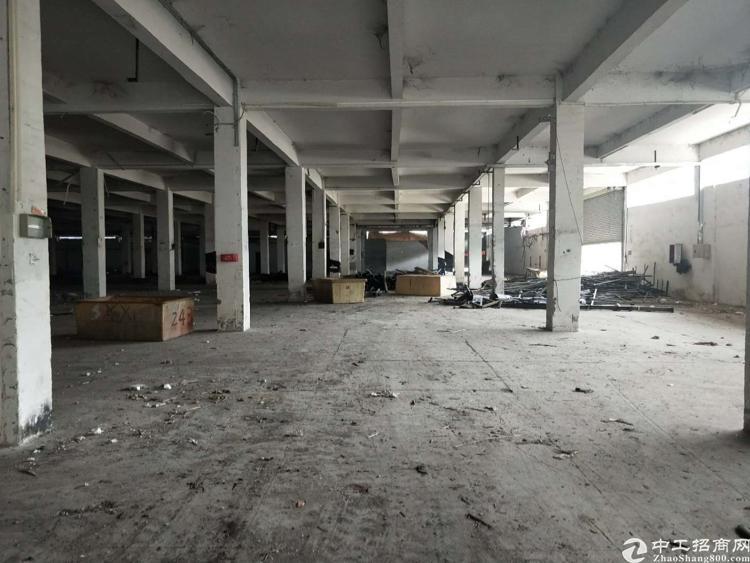 新塘镇滴水12米单一层厂房-图3