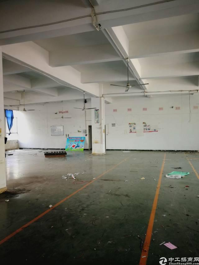 横岗大康楼上带精装修500平米厂房招租