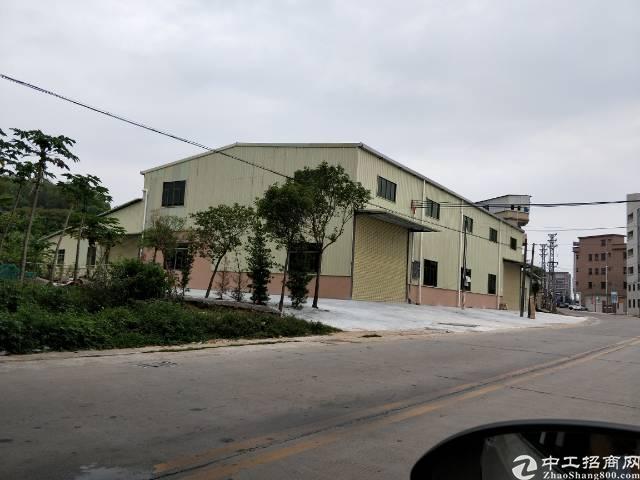 企石镇原房东钢构单一层厂房950平方