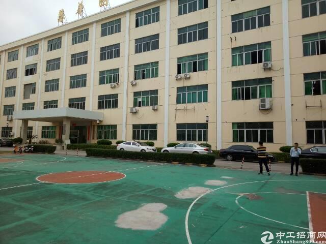 龙华民治原房东厂房4600平方米实用面积招租