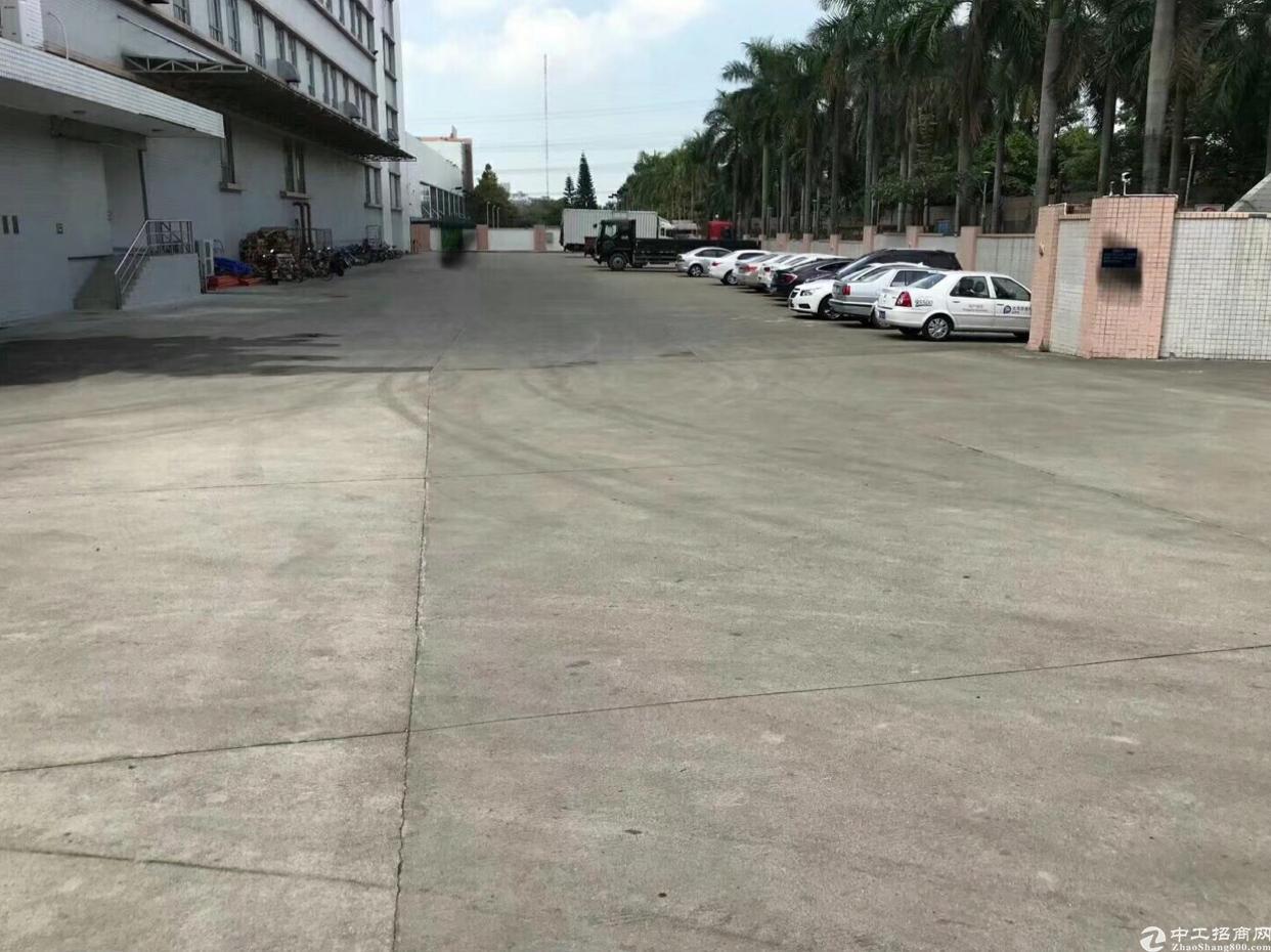 石岩塘头工业区一楼1500平米楼上3000平米厂房