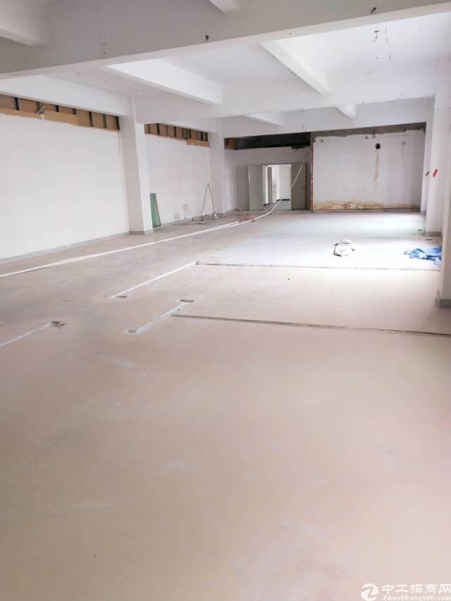 坂田五和大道新出带装修700平厂房出租