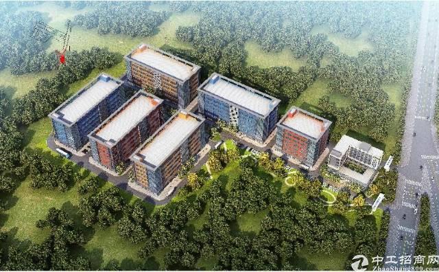 东莞西部全新产业园