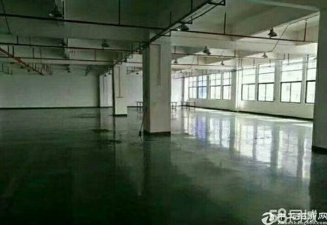 新出独院厂房4层厂房加办公室