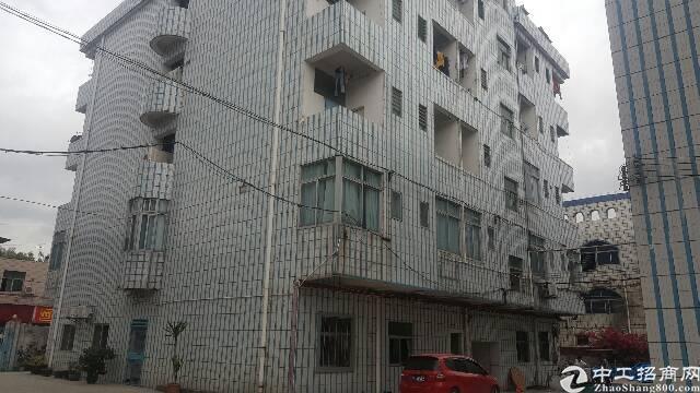 塘厦石鼓3层独院厂房7000平方招租-图2