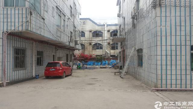 塘厦石鼓3层独院厂房7000平方招租