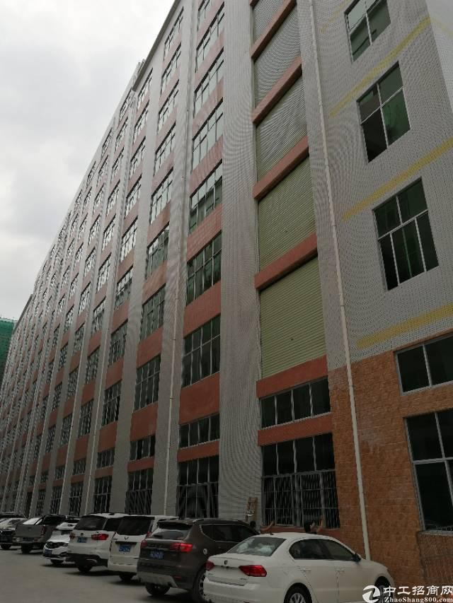 凤岗镇新出8楼1800平米精装修标准厂房