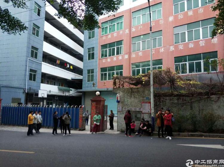 横岗四联社区独门独院厂房。6480平方大小可分租