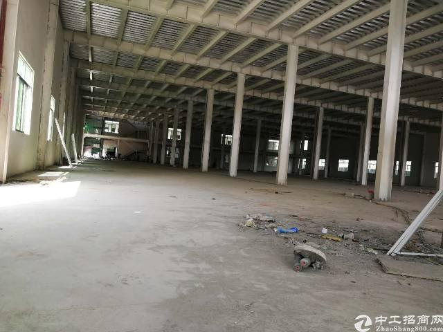 东莞清溪渔梁围独院钢构空出3500平出租,只要19元