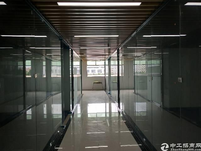 观澜汽车站边 全新精装修写字楼出租 格式多选 拎包入住