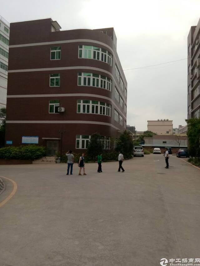 龙华天虹附近新出整栋2100平米办公室招租,接收整租