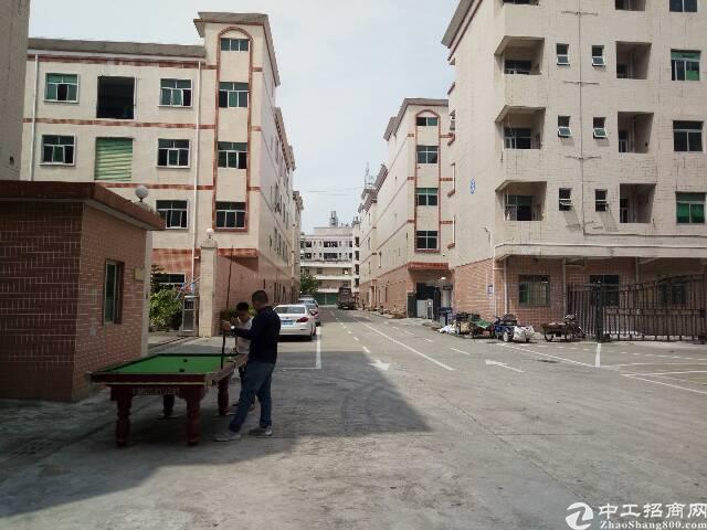 平湖华南城旁4万平米独院厂房带独立办公楼出租!可分栋租