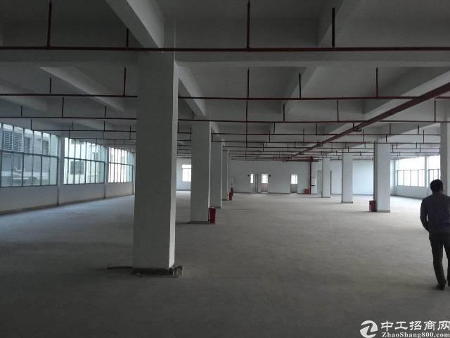 坪山新区大工业区2楼一层2213平出租,有消防喷淋
