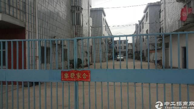 塘厦石鼓3层独院厂房7000平方招租-图4