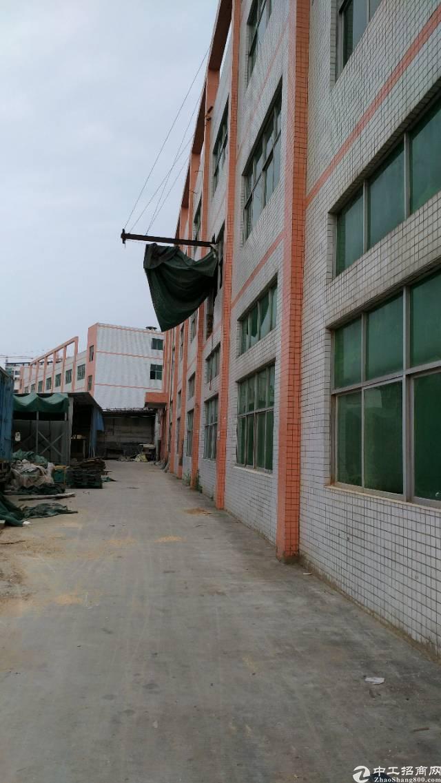 龙岗龙东4700平米独院厂房招租