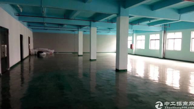 东莞清溪楼上1800平厂房出租,全新地平漆,可分租