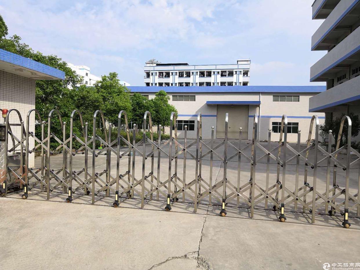 黄江镇独院厂房招租