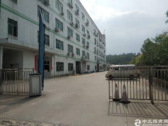 横岗四联社区大工业园内独院厂房空出三楼一整层850平两吨电梯