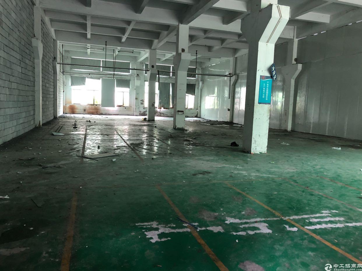 沙井1楼标准厂房