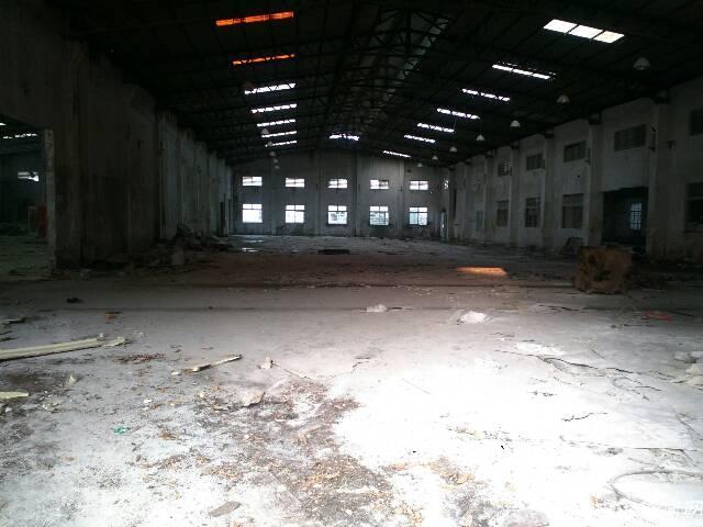 公明新出2000平米钢构厂房出租