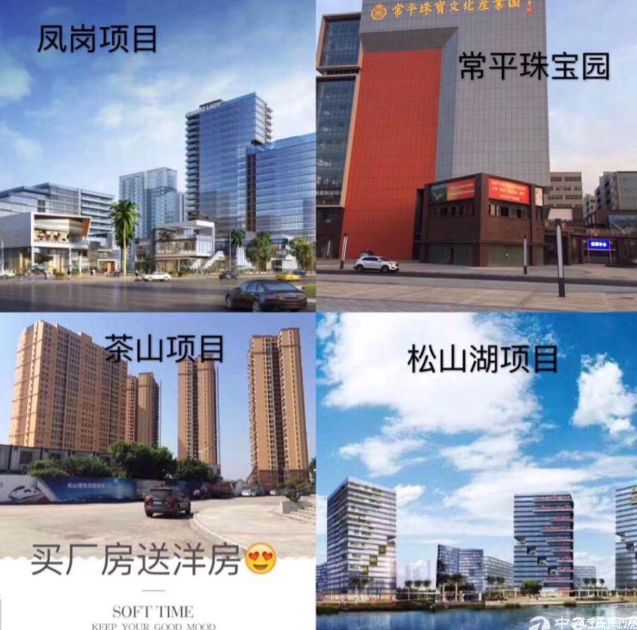 东莞高新工业园区国有50年产权厂房出售