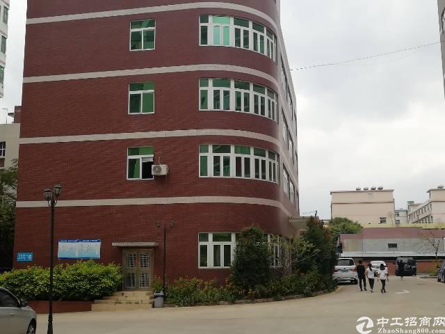 龙华龙澜大道旁新出精装修独栋办公楼1-4层2100平
