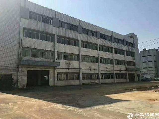 罗田双高速出口2楼豪华装修680平出租