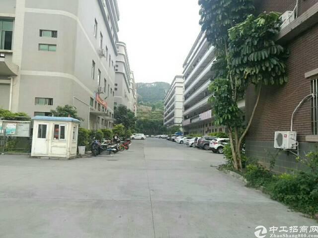 沙井国道边一楼2400平高6米出租
