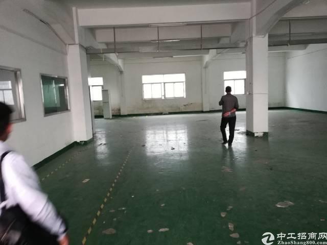 西乡九围630平一楼带装修厂房出租