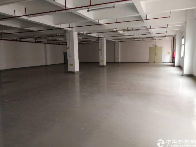 福永怀德107国道边原房东1100平-图2