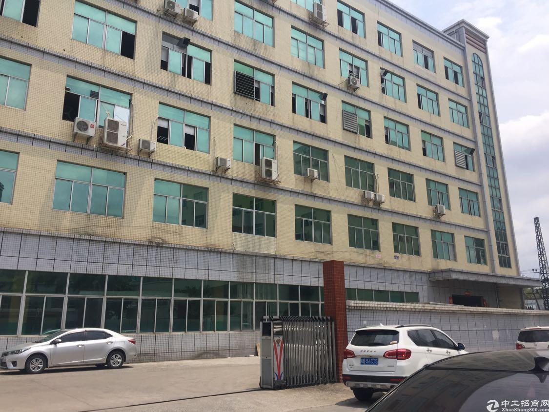 观澜新田新出楼上520平方厂房精装修