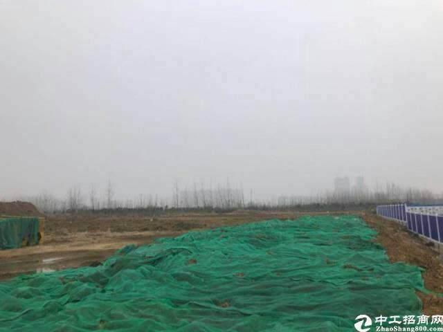 惠州惠阳区国有官网投资建厂5-100亩2