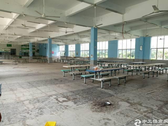 沿江高速出口单一层仓库办公贸易标准厂房1200方招租