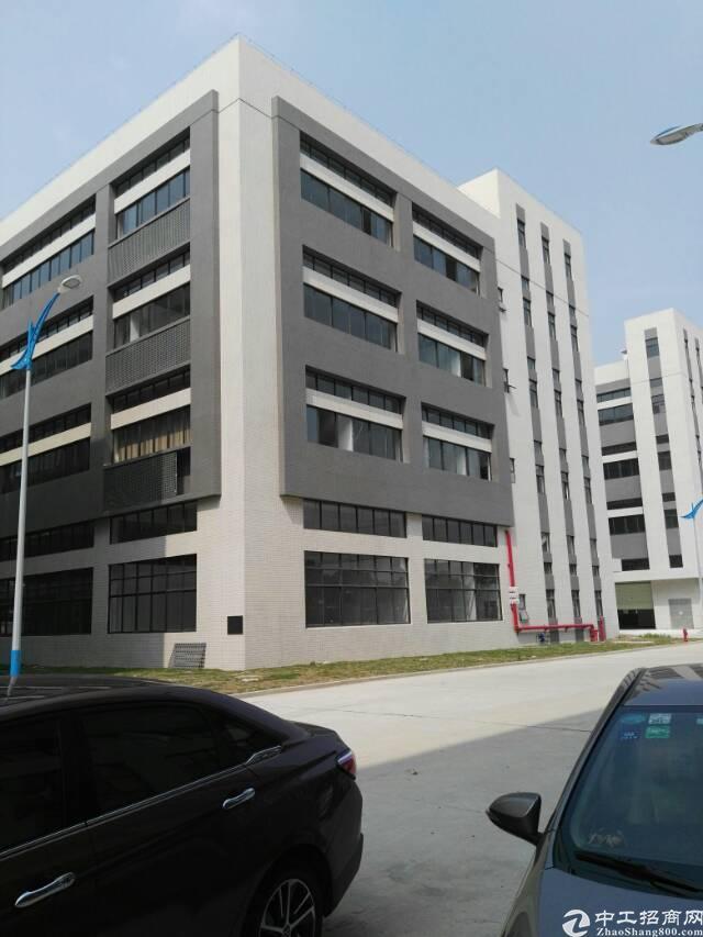 高埗镇大型智造工业园三楼标准厂房出租