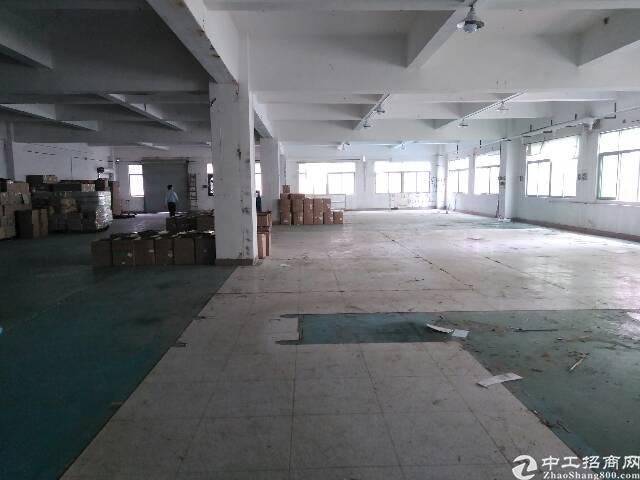 东莞长安新空出标准独院厂房2楼1200㎡带装修招租